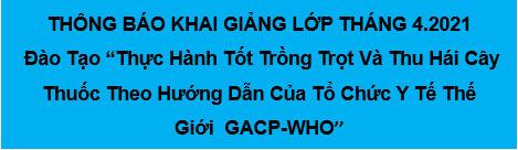 KHAI GIẢNG LỚP ĐÀO TẠO GACP THÁNG 4/ 2021